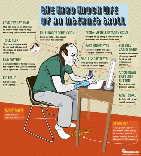 troll 542x600 - La dure vie d'un troll sur Internet [Infographique]